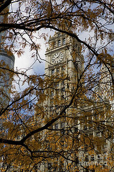 Wrigley Building in Autumn  by Leslie Leda
