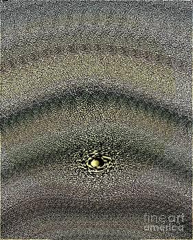 Wrinkle by Luksa Obradovic