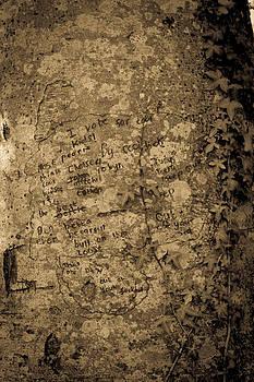 Written In Ink  by Darren Wilders