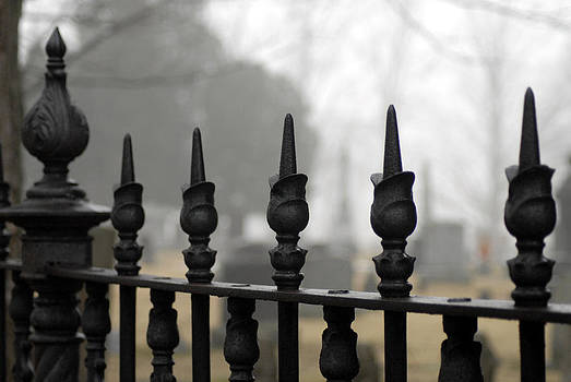 Wrought Iron Fence by Donna Desrosiers