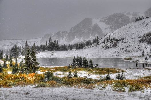 Wyoming's Medicine Bow National Forest by Geraldine Alexander