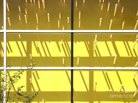 Yellow Abstract by Tony Cordoza