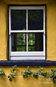 Svetlana Sewell - Yellow Barn Window