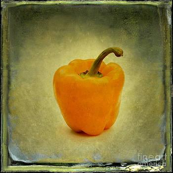 BERNARD JAUBERT - Yellow bell peper
