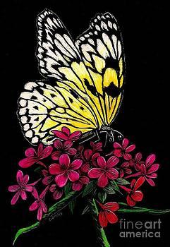 Yellow Butterfly by Jennifer Jeffris