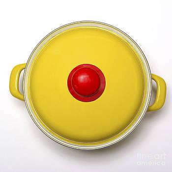 BERNARD JAUBERT - Yellow cooking pot