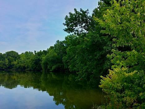 Yellow Creek by Chris Tarpening