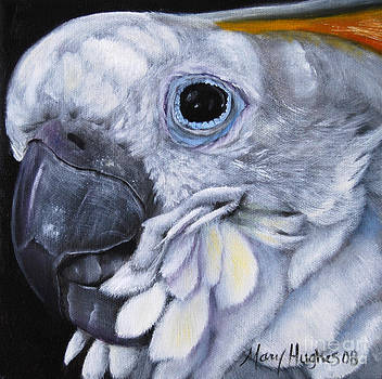 Yellow Crested Cockatoo by Mary Hughes