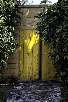 Lynn Palmer - Yellow Double Doors
