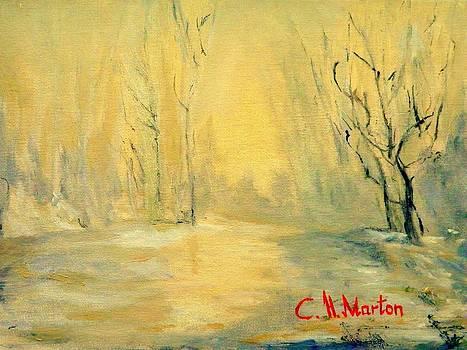 Yellow  Gold by Clara H Marton