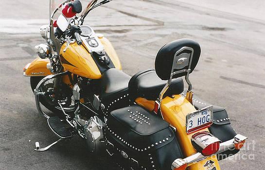 Steve Knapp - Yellow Harley