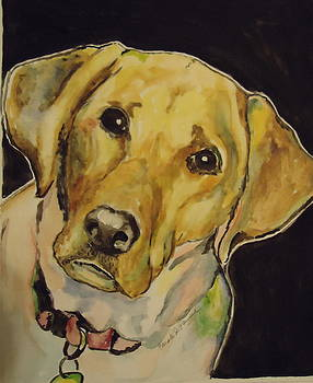 Yellow Lab by Carole Powell