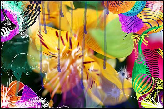 Yellow Lily by Aya Murrells