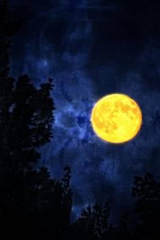 Yellow moon by Dan Quam