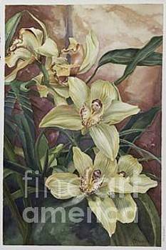 Yellow Orchid by Lisa Prusinski