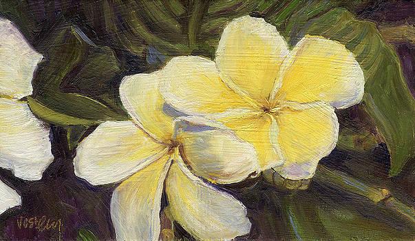 Stacy Vosberg - Yellow Plumeria Flowers