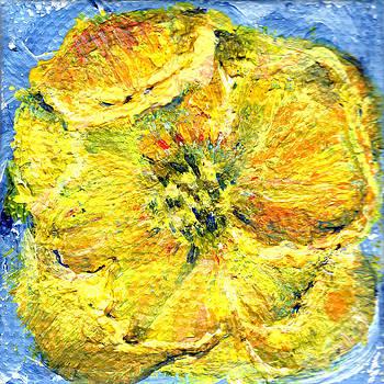 Regina Valluzzi - Yellow poppy