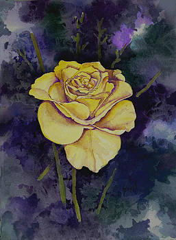 Yellow Rose by Sam Sidders