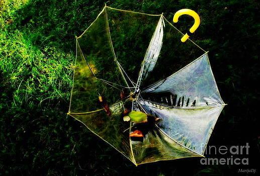 Yellow umbrella by Marija Djedovic