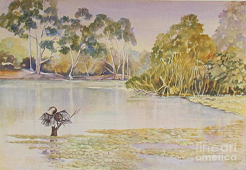Yellow water billabong Kakadu N.T Australia by Audrey Russill