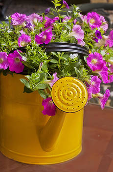Yellow Watering Can by Joan Bertucci