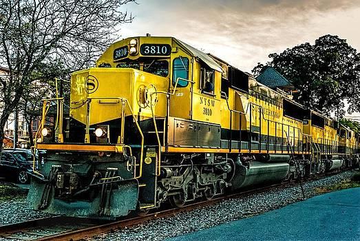 Yellowjackets by Mark Cranston