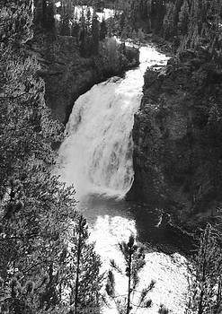 Yellowstone Falls by Kathleen Struckle