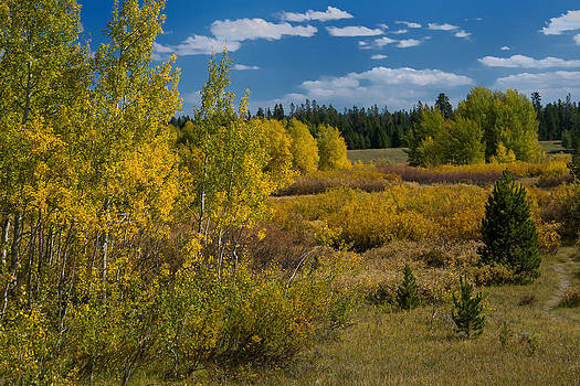 Roger Mullenhour - Yellowstone in the Fall