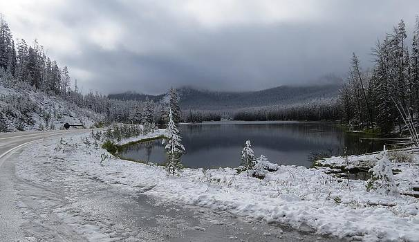 Yellowstone snow by Diane Mitchell
