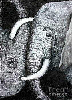 Yin and Yang - Elephants by Ursula Reeb