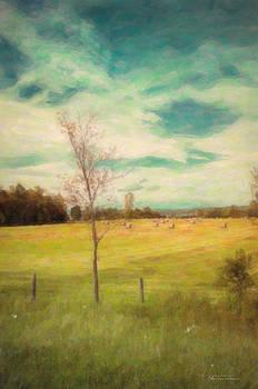 Yonder Lies the Harvest by Dustin Abbott