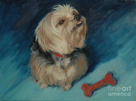 Yorkie with a Bone by Pet Whimsy  Portraits
