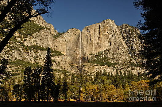 Yosemite Falls by Carolyn Burns Bass