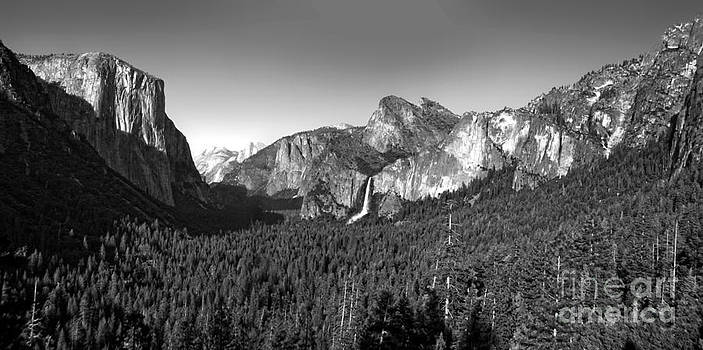 Gregory Dyer - Yosemite Inspiration Point