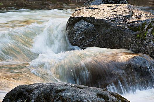 Yosemite Liquid Gold 2 by Kay Price