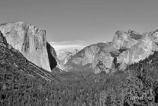 Yosemite Tunnel View by William Wyckoff