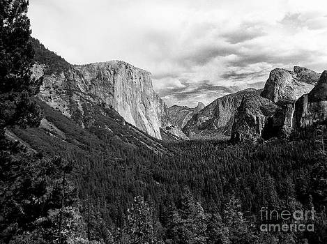 Yosemite Valley  by Chris Berry