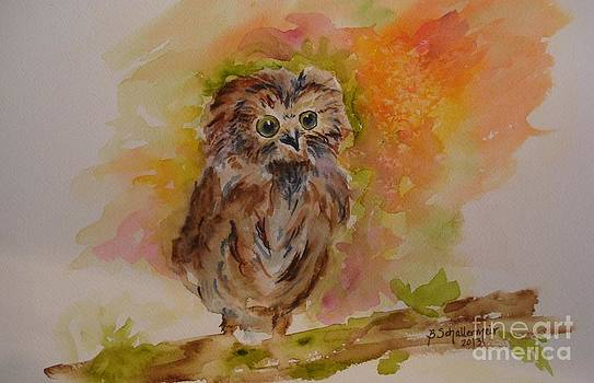 Young and Wise by Bonnie Schallermeir