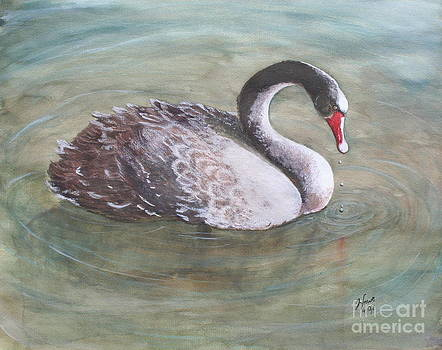 Young Swan by Jan Lowe