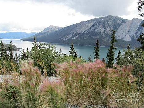 Yukon Blue by Donna Jackson