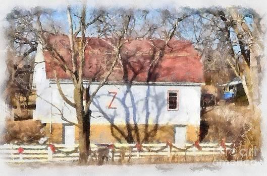 Liane Wright - Z Ranch