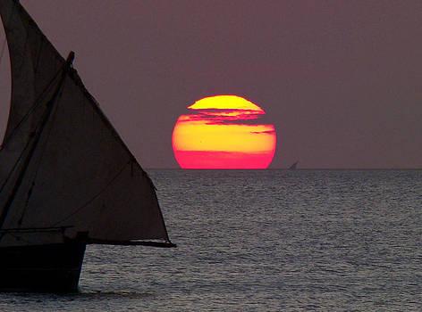 Zanzibar sunset by Giorgio Darrigo