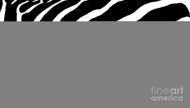 Barbara McMahon - Zebra Abstract