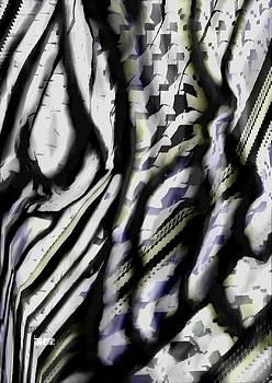 Zebra by Fatima Hameurlaine