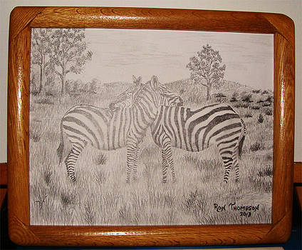 Zebra Love by Ron Thompson