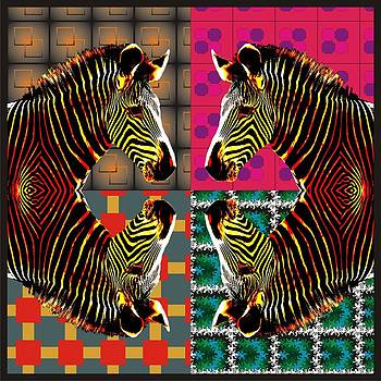 Zebra by Nandan NAGWEKAR