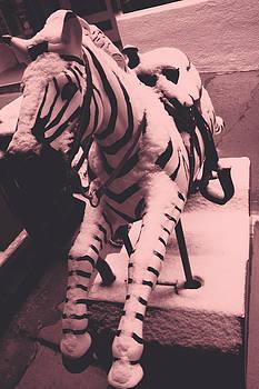 Zebra Penny Ride by Steven  Taylor