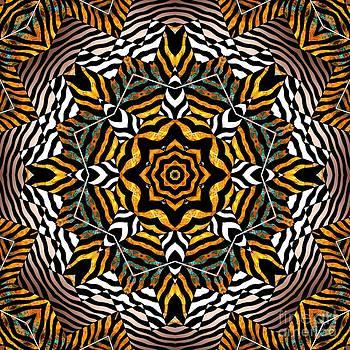 Zebra Star Mandala by Joseph J Stevens