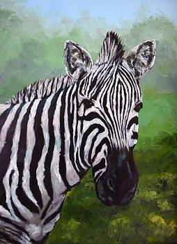 Zebra by Wanda Bellamy