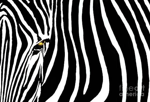 Zebressence by Dan Holm